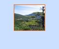 Большехехцирский государственный природный заповедник