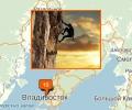 Где заниматься скалолазаньем во Владивостоке?