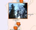 Куда сходить на охоту во Владивостоке?