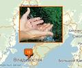 Где заказать доставку питьевой воды во Владивостоке?