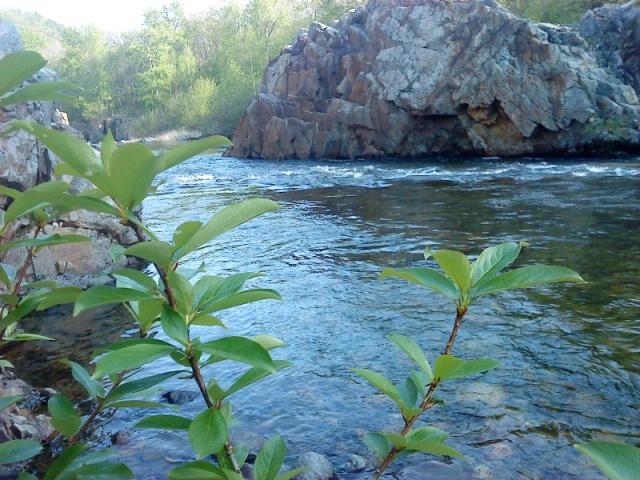 Каковы особенности рек Владивостока?