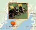 Какие клубы по интересам есть во Владивостоке?