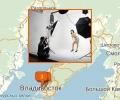 Где заказать профессиональную фотосессию во Владивостоке?