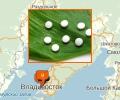Где оказывают услуги по доставке лекарств по Владивостоку?