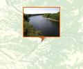 Лососевый заказник Река Коль