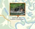 Памятник природы Река Сомня