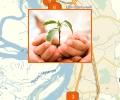 Какие благотворительные организации есть в Хабаровске?