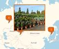 Где продают саженцы во Владивостоке?