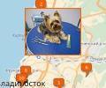 Где во Владивостоке есть парикмахерские для собак и кошек?